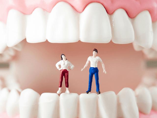 歯の減少によるパワーバランスの偏り